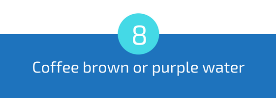 coffe brown or purple water troubleshooting pools guide 25 most common pool water problems