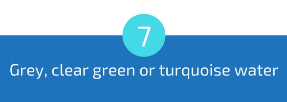 grey clear green or turqoise colour color pool water troubleshooting pools guide 25 most common pool water problems