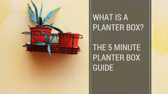 what is a planter box pool safety solutions pool inspection pool compliance